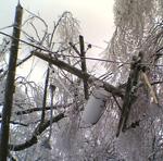Ice Stormt