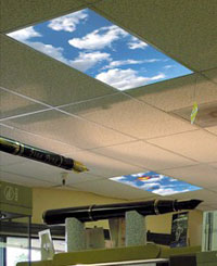fluorescent light diffusers are those plastic panels that cover the fluorescent tubes in the ceiling of your office or cube the clever folks at skyscapes