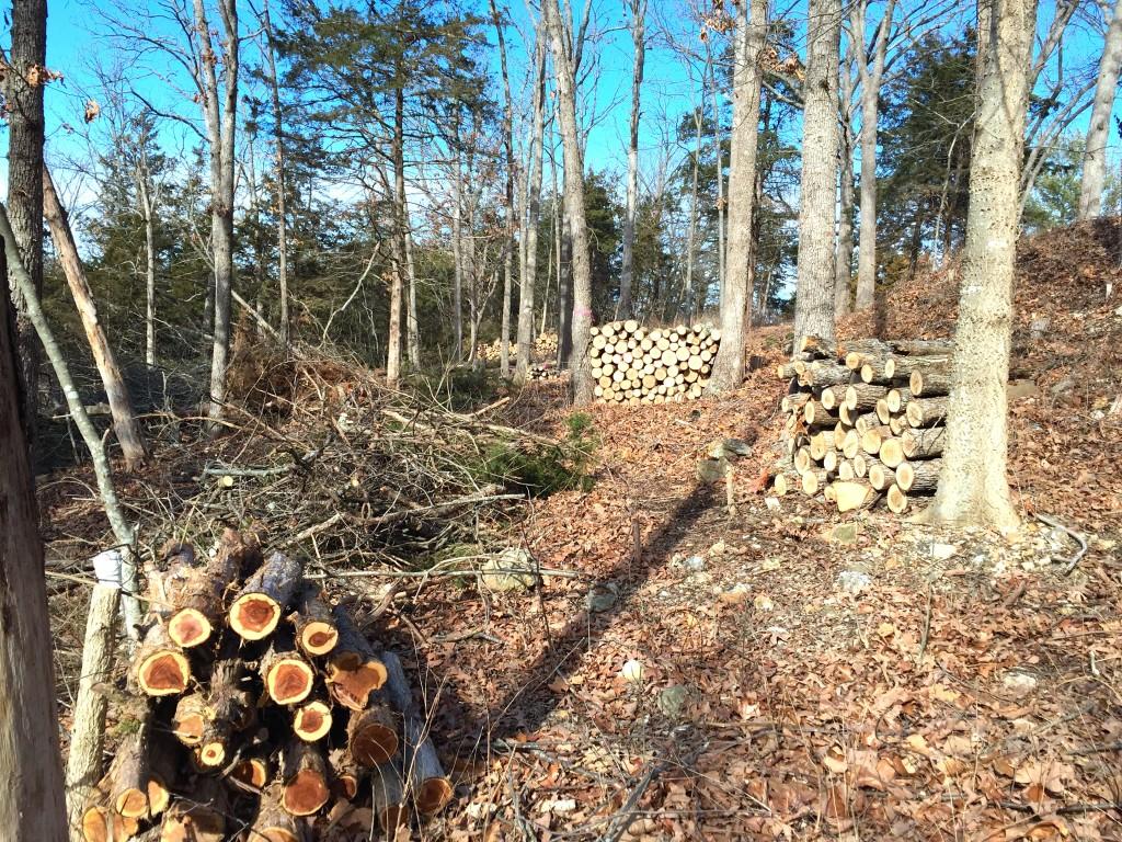 Logs - 4